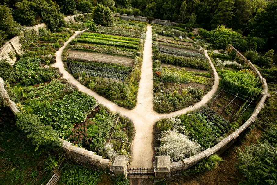 The world elite or Illuminati and you - permaculture farm